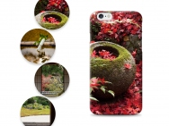 iPhone 6 Cases - Kyoto Zen Gardens