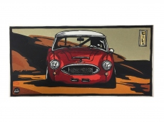 Austin Healey WRC Model - wood-print art