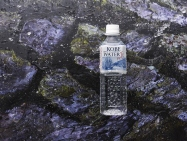 500 ml, Pack of 24 Water from Rokko Nunobiki