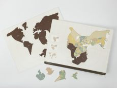 PANGAEA (Supercontinent) Puzzle